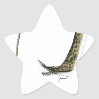 curlew, tony fernandes star sticker