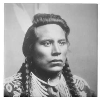 Curley, of the Crow tribe, one of Custer's scouts Tile