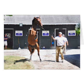 Curlin - Dyning Out Hip #13 Card