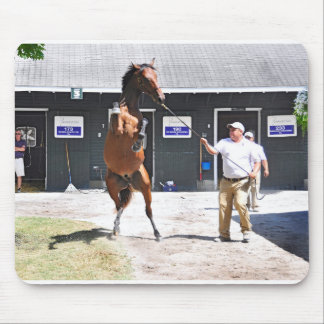 Curlin - Dyning Out Hip #13 Mouse Pad