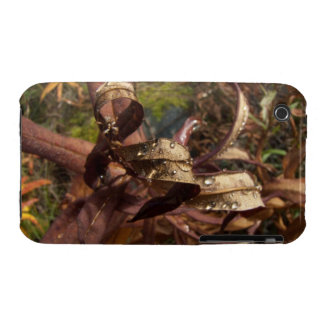 Curls and Jewels iPhone 3 Case-Mate Cases