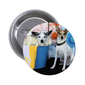Curly and Archimedes - Rat Terriers Pins