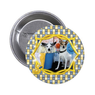 Curly and Archimedes - Rat Terriers Pinback Button