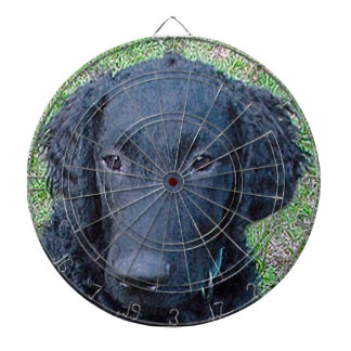 Curly_Coated_Retriever.png Dartboard