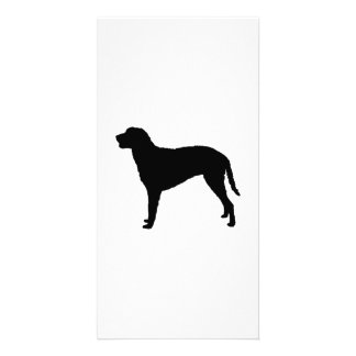 Curly Coated Retriever Silhouette Love Dogs Card