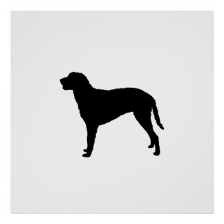 Curly Coated Retriever Silhouette Love Dogs Poster