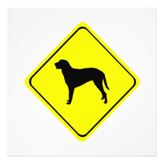 Curly Coated Retriever Warning Sign Love Dogs Photo Print