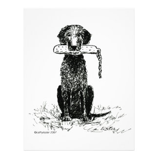 Curly Coated Retriever with Bumper Custom Flyer