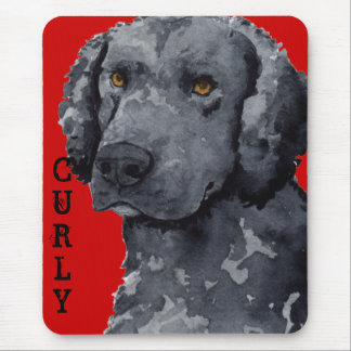 Curly Color Block Mouse Pad