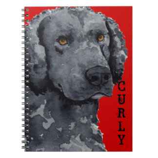 Curly Color Block Notebook