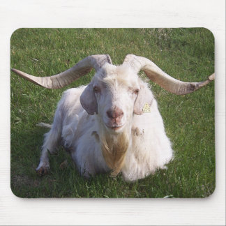Curly Horn Goat Mouse Pad