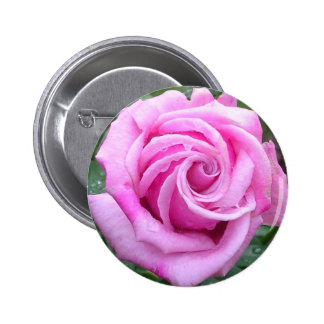 Curly Rose Pinback Button