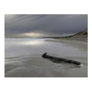 Curracloe beach in winter postcard