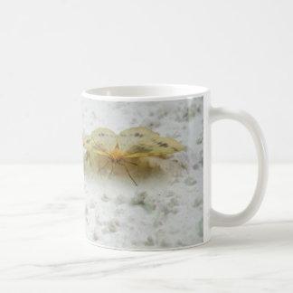 Currant Spanworm Moth Mug