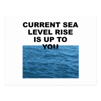 Current sea level rise is up to you postcard