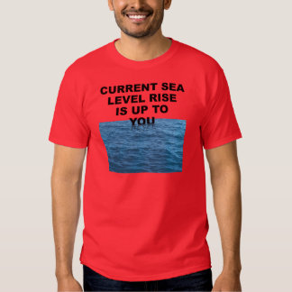 Current sea level rise is up to you T-Shirt