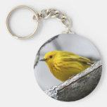 Curruca amarilla llavero
