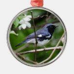 curruca azul Negro-throated Adornos De Navidad