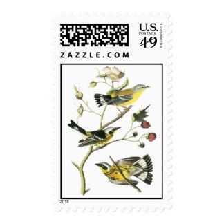 Curruca de la magnolia, Juan Audubon Sellos