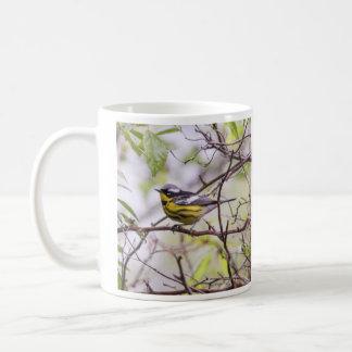 Curruca de la magnolia taza básica blanca
