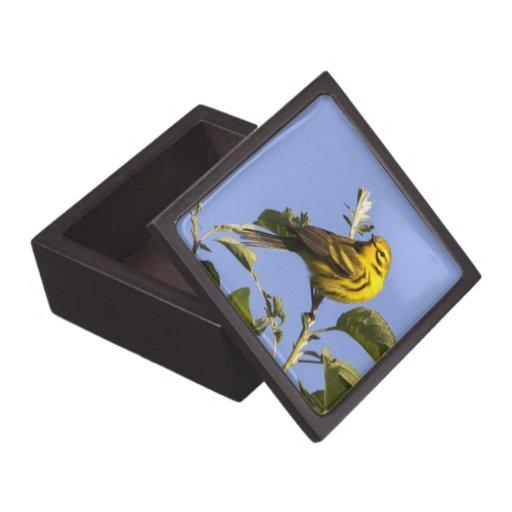 Curruca de la pradera caja de regalo de calidad