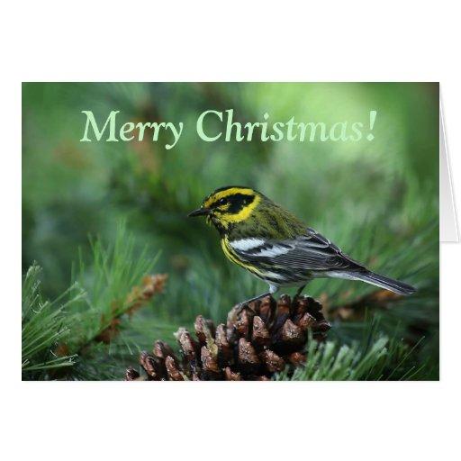 curruca en una tarjeta de Navidad del ajuste del i