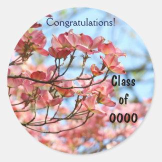 Curso de graduación de graduados de la enhorabuena pegatina redonda