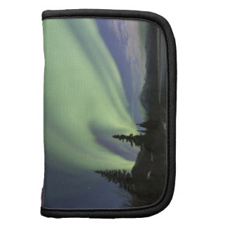 Curtains of green aurora borealis in the sky 2 organizer