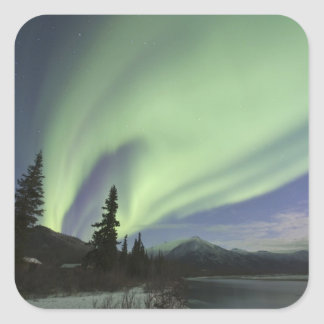 Curtains of green aurora borealis in the sky 2 square sticker