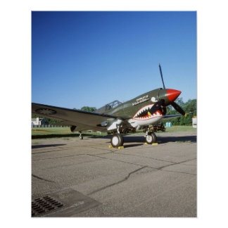 Curtiss P-40 Warhawk, at Minnesota CAF Air Show Poster