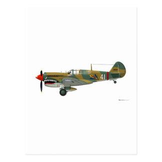Curtiss P-40 Warhawk Post Card