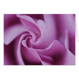 Curvature Purple Rose Notecard