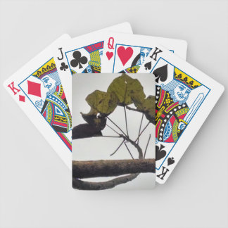 Curved leaves bicycle playing cards