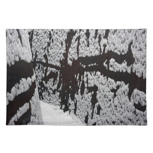 Curved snow, Basel, Switzerland Cloth Placemat