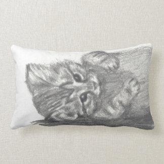 cushion kitten