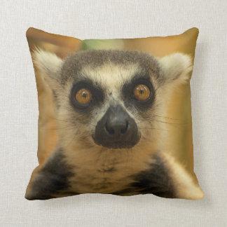 Cushion Lemur MAKI CATTA