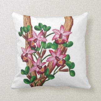 Cushion Orquídeas Rosa