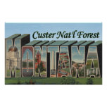 Custer Nat'l Forest, Montana Poster
