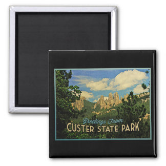 Custer State Park 2 Inch Square Magnet