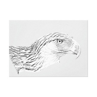 Custom (58.22cm x 41.76cm) Great Philippine Eagle Canvas Print