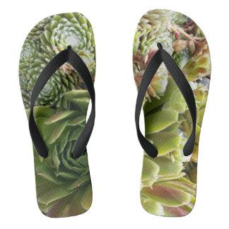 Custom Adult, Wide Straps - Succulents Pattern Flip Flops