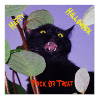 Custom Angry Halloween black cat Poster
