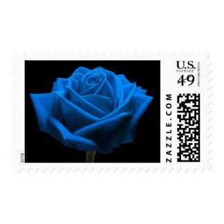 Custom Blue Rose Wedding Flowers Postage