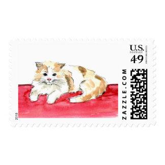 Custom Cat Illustration Stamp