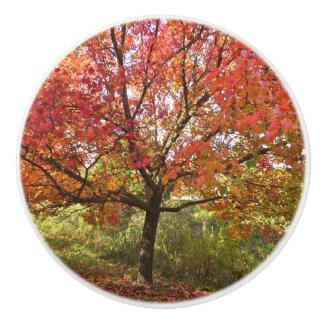"""CUSTOM CERAMIC KNOB""""AUTUMN SPLENDOR""""/TREE WITH ORA CERAMIC KNOB"""