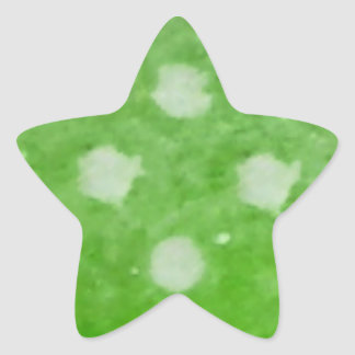 Custom Christmas Candy Star Stickers