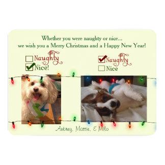 Custom Christmas Dog Card