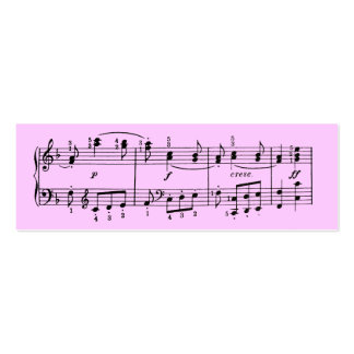 Custom Color Musical Notes Profile Card Double-Sided Mini Business Cards (Pack Of 20)