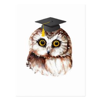 Custom Cute Graduating Owl Post Cards