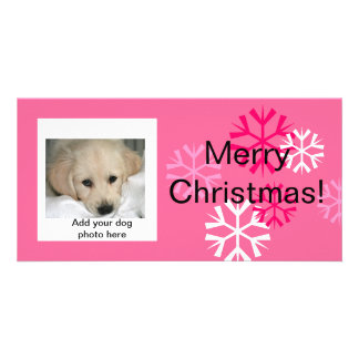 Custom Dog Christmas Photo Cards Pink